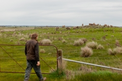Tim Hill, general manager of Tiverton Farm, on the farm's land. Victoria, Australia