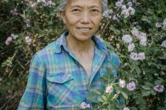 Teresa Zhang, started at the Tianfu Garden Farm (God's Grace Garden) many years ago when she started suffering from poor health. Up to that point she was working in international trade in a high profile job. Her change of circumstances, and her devout faith in Christianity, led her to start this organic farm on the outskirts of Beijing she claims. This organic farm is one of the very first  of its kind in this region.