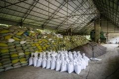 Organic fertilizer made at the rice processing plant for the organic rice and duck farm nearby.