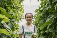 Shi Yan, one of the co-founders of Shared Harvest. Shared Harvest is an organic farm promoting the CSA / Community Shared Agriculture model. Since the program started in May 2012, Shared Harvest has developed and now posseses 66 acres based in Tongzhou and Shunyi Districts in Beijing, planting organic vegetables, fruit and grains and also breeding livestock.