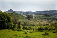 ATS_FOLU_Ethiopia020_bright