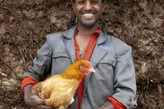 "Antigegn Wunetu 30 and his wife, Mekle Wunete 27 with son (photographed with chickens) Adisu 7 and baby Simegn 1 yr 9months, beneficiaries of The Debre Yacob Watershed Learning Restoration Project in Bahir Dar, Ethiopia. Antigen says, "" I have just bought 24 chickens. Before they started the project 8 years ago there was nothing growing here. Since they supported the community I can now grow vegetables, fruits, and chickens. We are benefiting so much, we can eat our produce and sell the leftovers, I get benefit from avocado, hops, mangos, hops, we didn't know avocado before they brought it here. We used to have a small grass covered hut, now we have a big house. All my expenses are now covered. Before I was thinking we would have to move because there was nothing here, now there is everything. Have 4 children, and they are all involved in the farming. They love it. When they are not in school. They each have their jobs to help with on the farm and we are all enjoying being involved as a family. I am so happy when I am doing the farming, but when I see the beauty of this now green area it makes me even happier."""