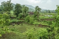 Land leveing at the Sagai village.