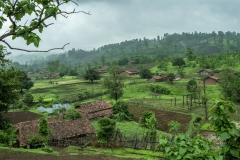 Sankli village in Sagai forest in Narmada district in Gujrat.