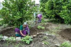Venkat Ratnam & Kurre Padma at thier kitchen garden in village Ramachandrapuram where they have adpoted Zero Budget Natural Farming.