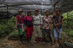 Portrait of women community members at a nursery at the Cinta Raja Rainforest Restoration Site in Gunung Leuser National Park (GNLP) in Sumatra, Indonesia.