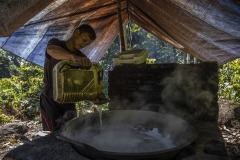A farmer boils the sap collected from the sugar palm tree to be turned into sugar at a forest in Sintang regency, West Kalimantan, Indonesia.