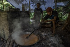 A farmer traditionally process sugar palm juice taken from a sugar palm tree into palm sugar at a forest in Sintang regency, West Kalimantan, Indonesia.
