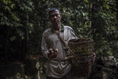 Portait of an ilipe nut farmer at the forest in Sintang regency, West Kalimantan, Indonesia.