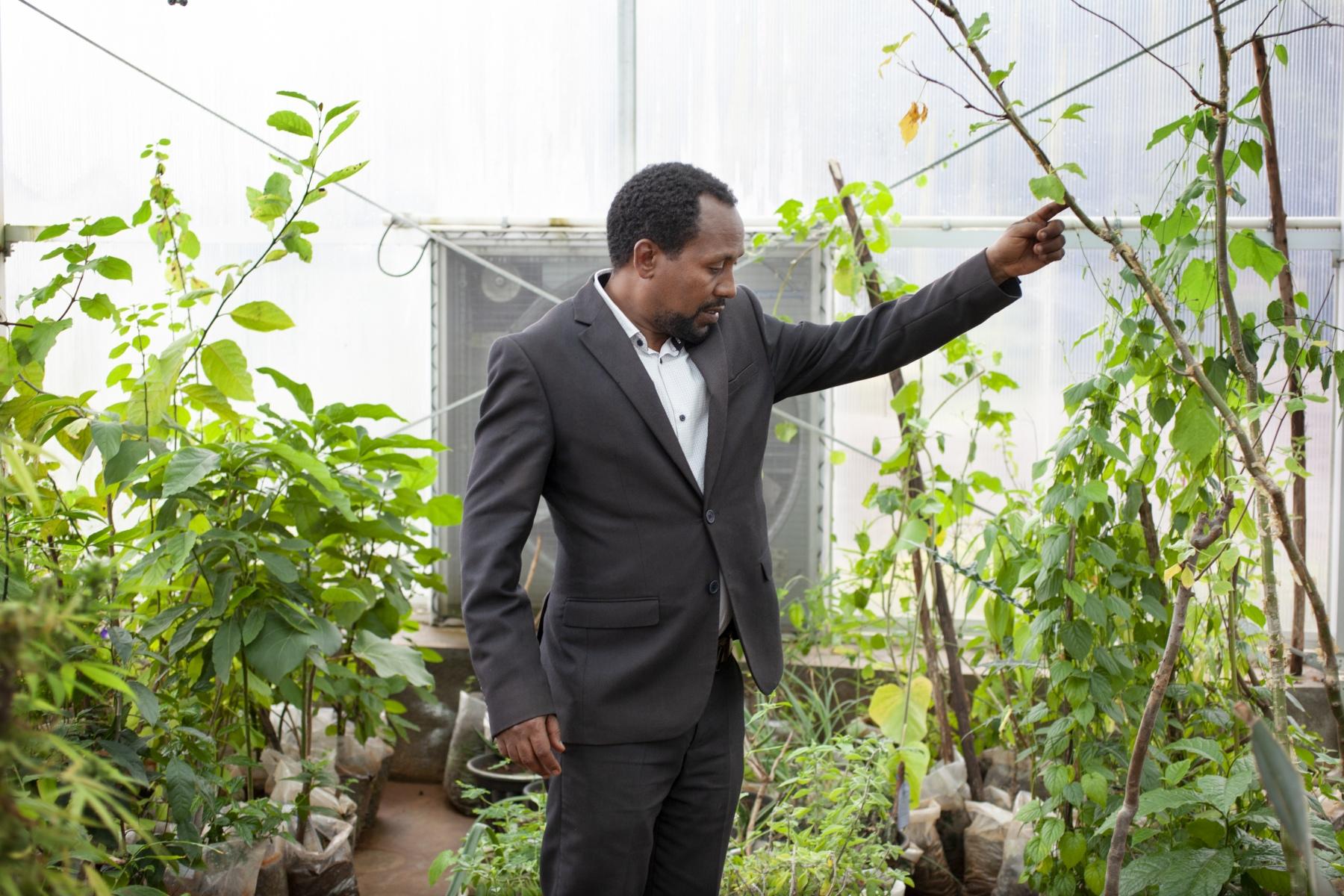Ethiopia Gullele Botanical Gardens Food And Land Use Coalition