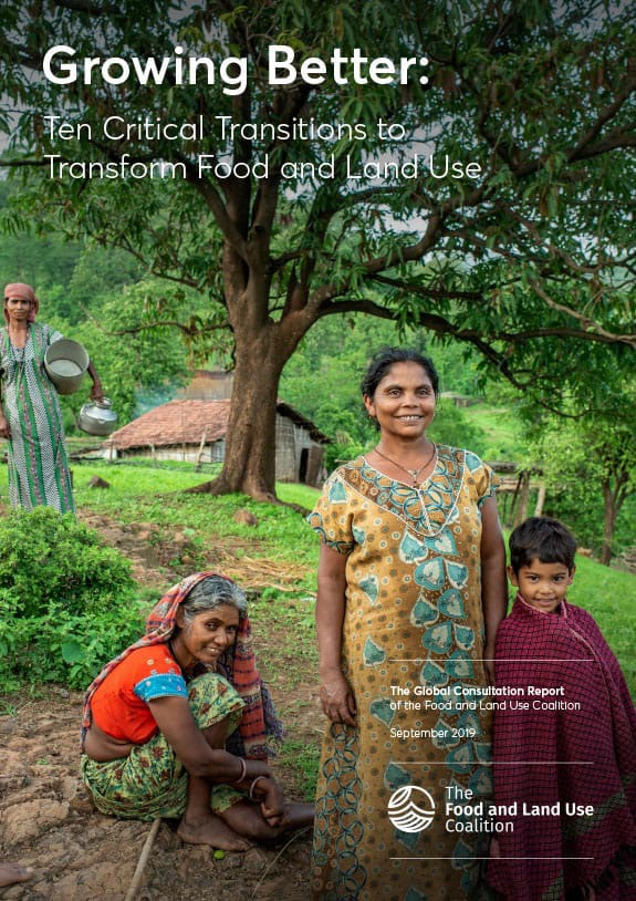 Ten Critical Transitions to Transform Food and Land Use