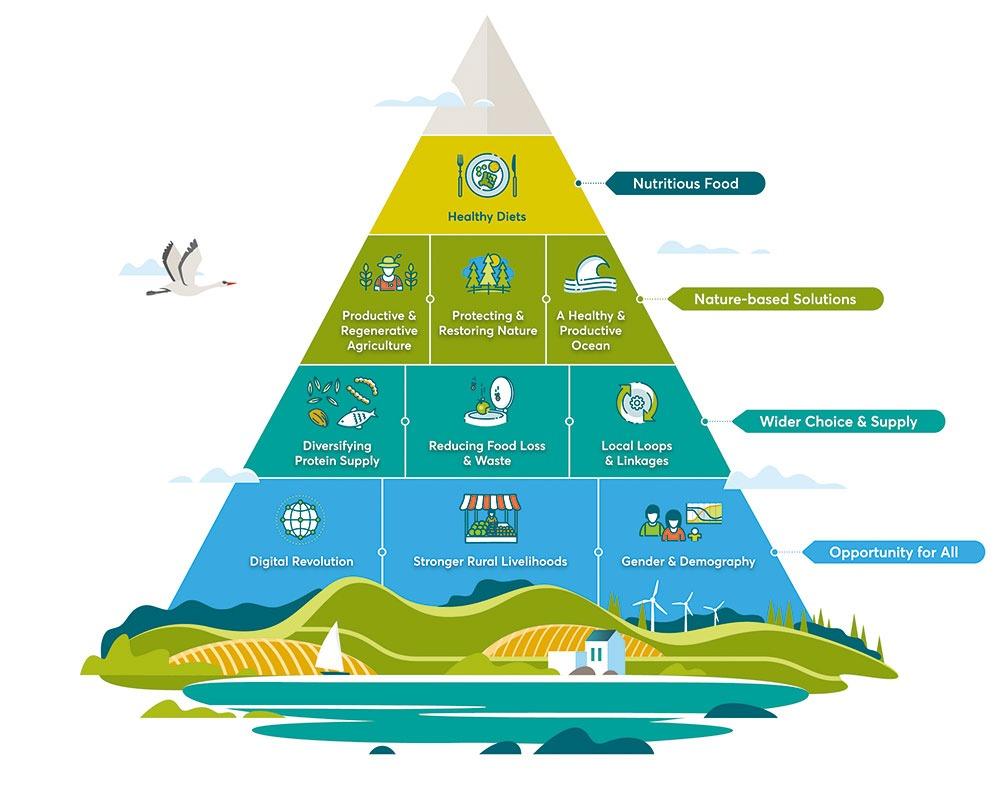 FOLU Pyramid