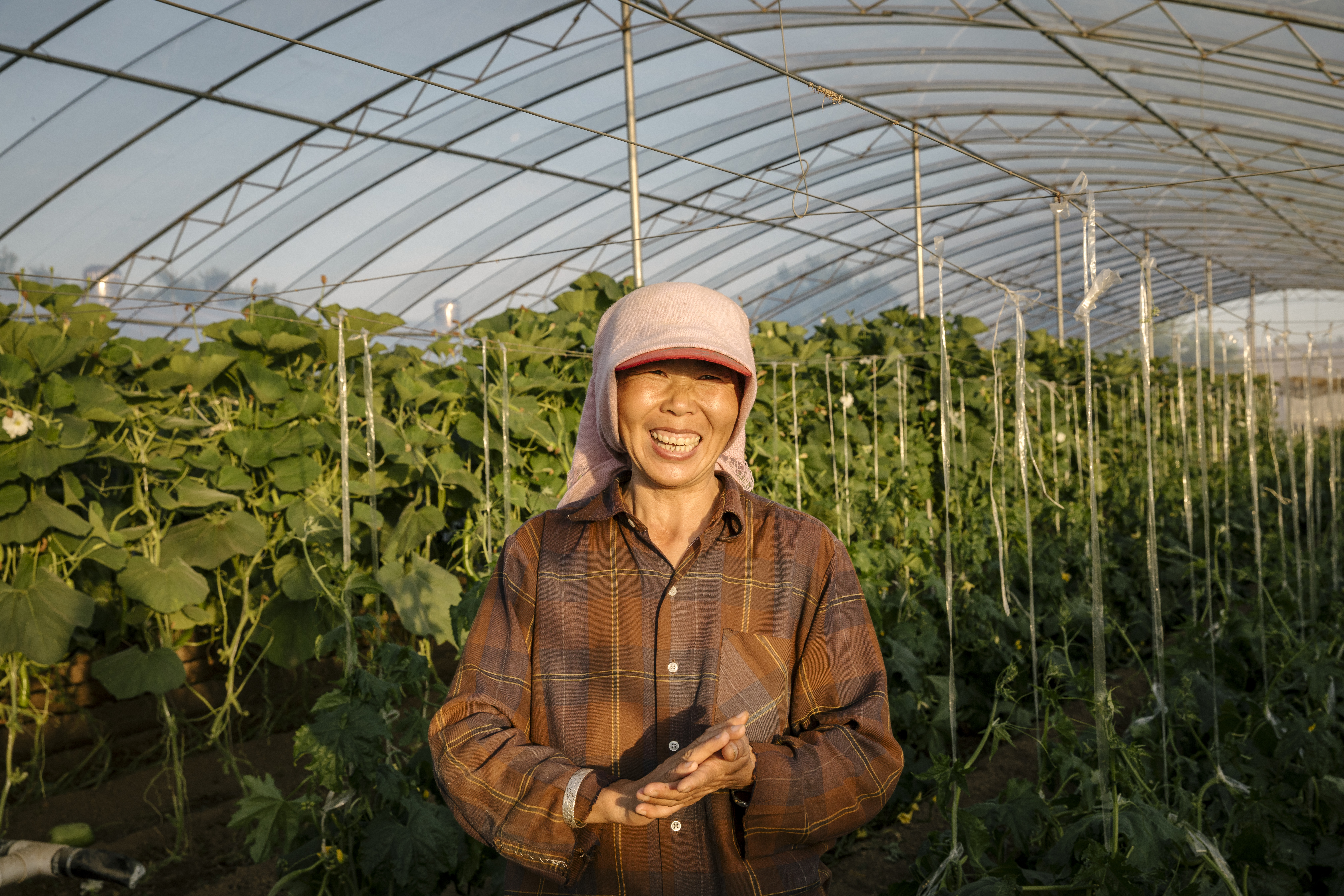 Reflections on UN Food Systems Summit progress to date